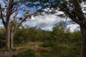 Tierro del Fuego Mountain